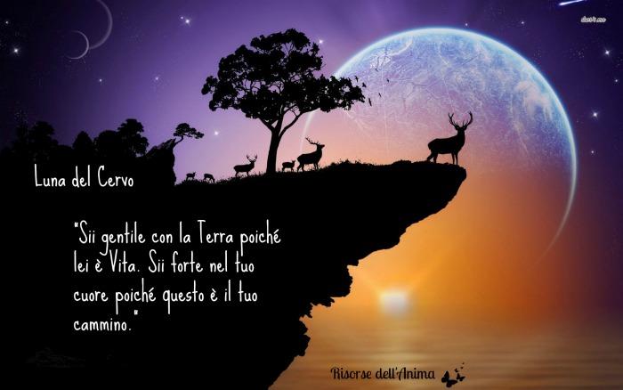 luna del cervo