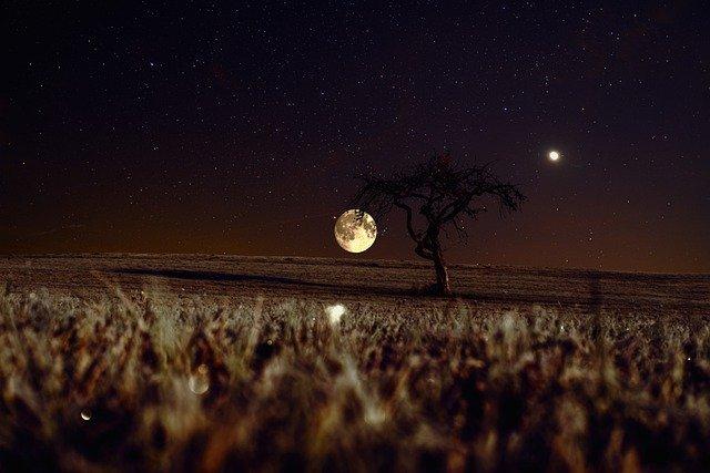 luna-in-campo-di-grano